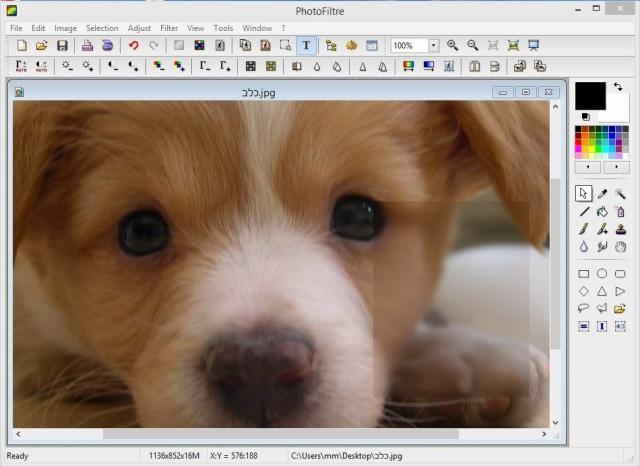 תוכנה לעריכת תמונות - PhotoFiltre
