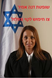 שופטת דנה אמיר - צו חיפוש לקוי ומזלזל