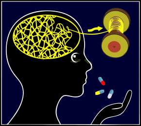 הסמים הפסיכיאטריים מרוקנים את המוח